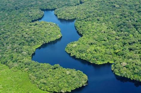 A Flórida brasileira e a Amazônia americana